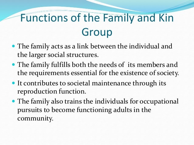 Functions of the Family and Kin  Group   The family acts as a link between the individual and  the larger social structur...