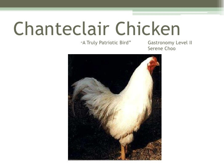 "ChanteclairChicken""A Truly Patriotic Bird"" 	Gastronomy Level II        						Serene Choo<br />"