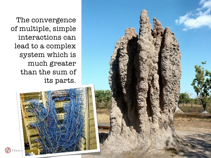 The convergence of multiple, simple    interactions can  lead to a complex     system which is       much greater     than...