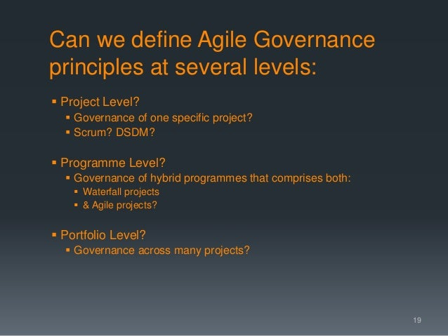 Can we define Agile Governance principles at several levels:  Project Level?  Governance of one specific project?  Scru...