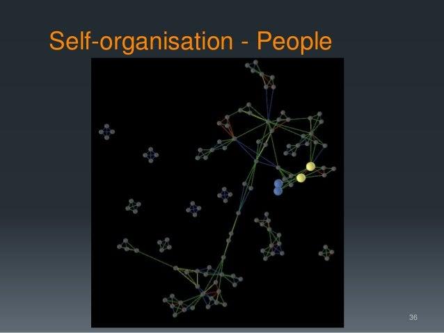 Self-organisation - People 36