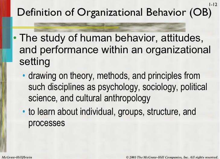 organisational behaviour report essay