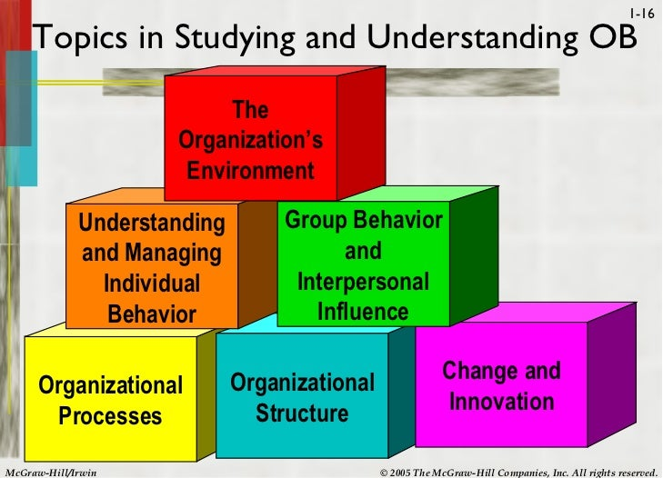 Organizational behavior essay topics