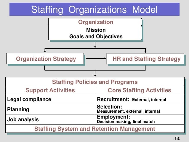 organizational staffing plan part 2 At present, ifac's staff comprises 53 positions (full and part time), including vacancies for some existing section 10 organizational and staffing plan strategic plan positions the planned staffing complement at the end of 2010 is 64 positions, with further consideration given to the need for approximately five new positions to be.