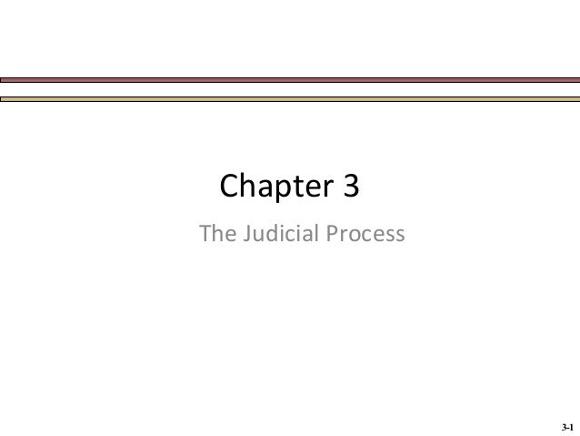 Chapter 3 The Judicial Process  3-1