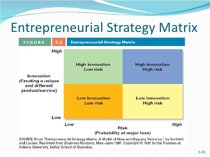 entrepreneural process As an entrepreneur you must make different types of decisions on everyday basis you must choose directions you must solve problems you must take actions the decision making process is one of the most important processes in your company simply, you as an entrepreneur will make a decision.