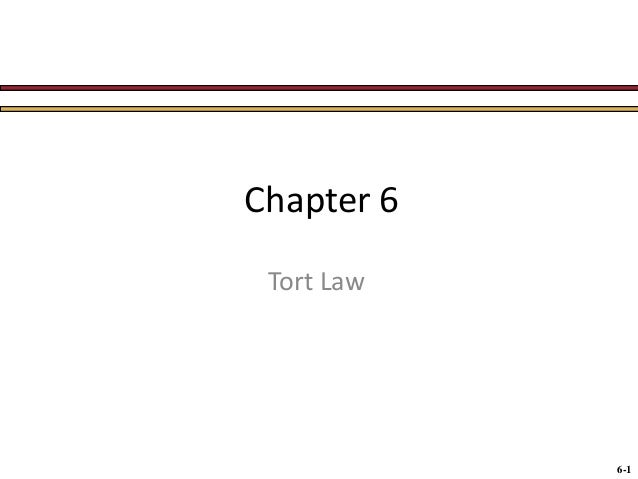 Chapter 6 Tort Law  6-1