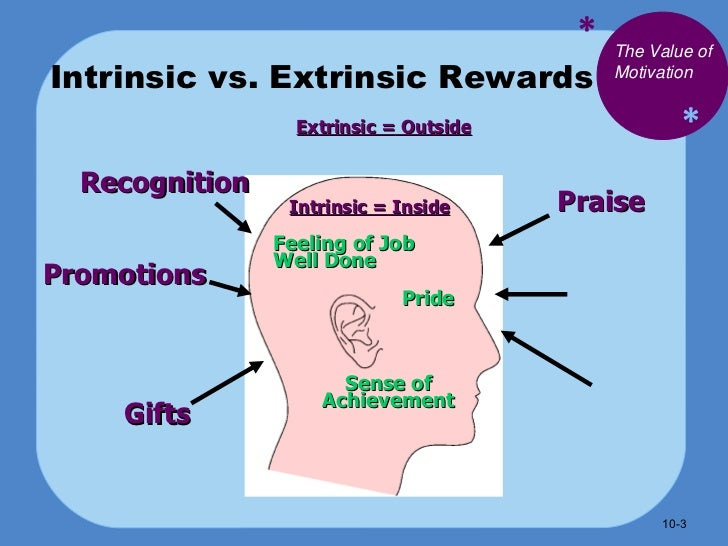 intrinsic and extrinsic rewards in the workplace pdf
