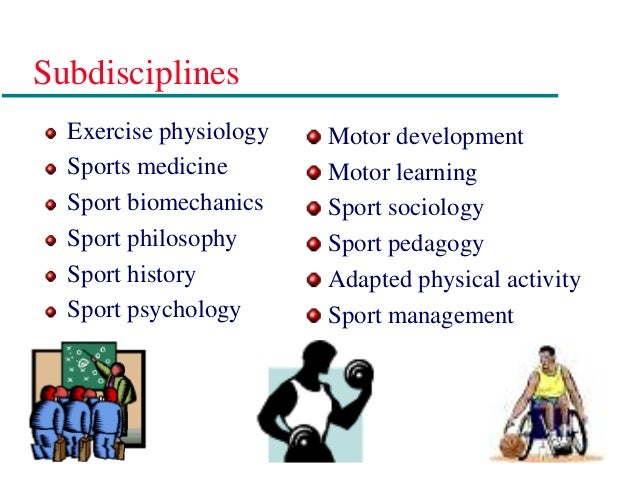 formal sub disciplines medical sociology Social institutions  from medical sociology in that this branch of sociology  between the two established disciplines of law and sociology.