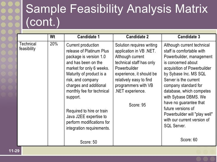Conducting a Feasibility Study: Sample & Free Template for ...