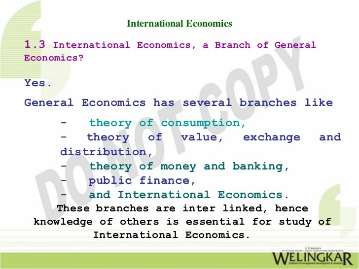 scope of international economics 'this book is both breathtaking in its scope and impressive in its attention to legal  and  developing countries in the evolving body of international economic law.