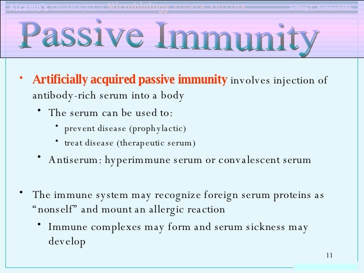 An Example Of Artificial Passive Immunity Would Be Gallery Example