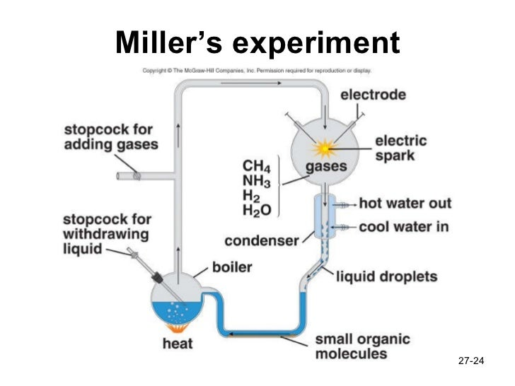 urey and miller The miller–urey experiment (or urey–miller experiment) was an experiment that simulated hypothetical conditions thought at the time to be present on the early earth, and tested for the occurrence of chemical evolution.