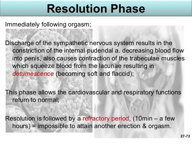 Is reflex peristalsis an orgasm