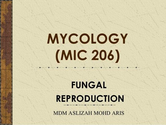 MYCOLOGY (MIC 206)    FUNGAL REPRODUCTIONMDM ASLIZAH MOHD ARIS