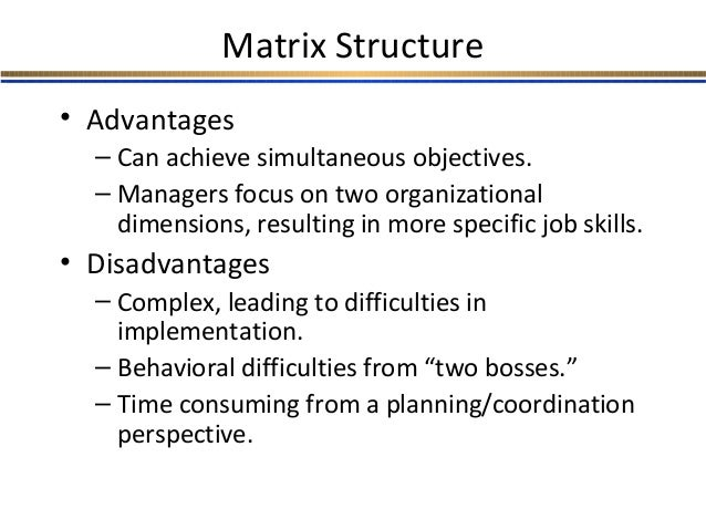 what advantages and disadvantages of a matrix type organization are apparent from this case Managers of organizations would then be viewed as problem managers, regardless of the types of products and services they help their organizations provide it should it has become apparent to most management scholars and practitioners that contemporary organizations are facing increasingly dynamic and changing.