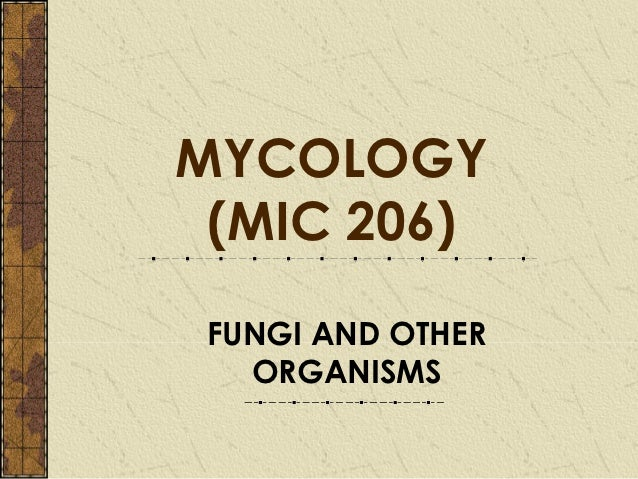 MYCOLOGY (MIC 206) FUNGI AND OTHER   ORGANISMS