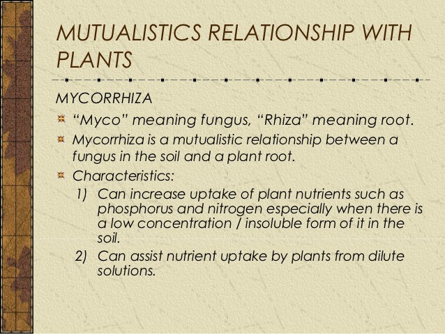 fungi are only pathogenic or parasitic relationship
