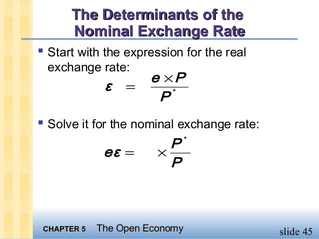 exchange rate determinants Determinants of exchange rates: the case of the chilean peso annals of the international masters of business administration at unc wilmington written by sebastian zwanzger chaired by cetin ciner.