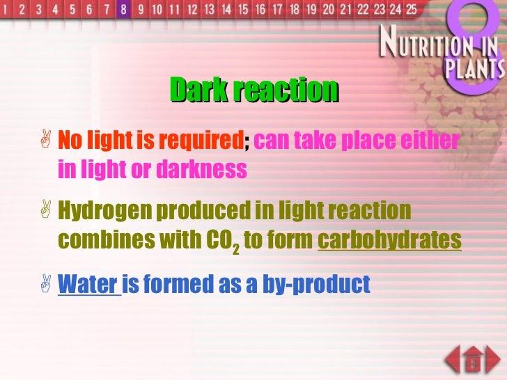 Dark reaction <ul><li>No light is required ;  can take place either in light or darkness </li></ul><ul><li>Hydrogen produc...