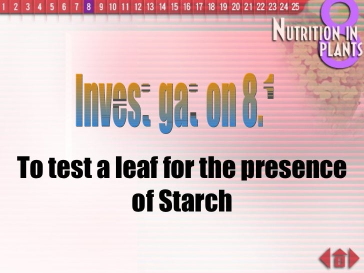 To test a leaf for the presence of Starch Investigation 8.1