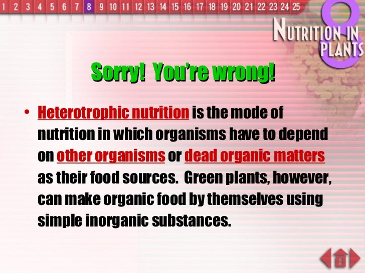 Sorry!  You're wrong! <ul><li>Heterotrophic nutrition  is the mode of nutrition in which organisms have to depend on  othe...