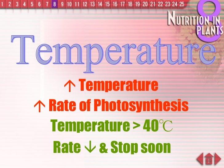 <ul><li>   Temperature  </li></ul><ul><li>   Rate of Photosynthesis  </li></ul>Temperature Temperature > 40 ℃ Rate    &...