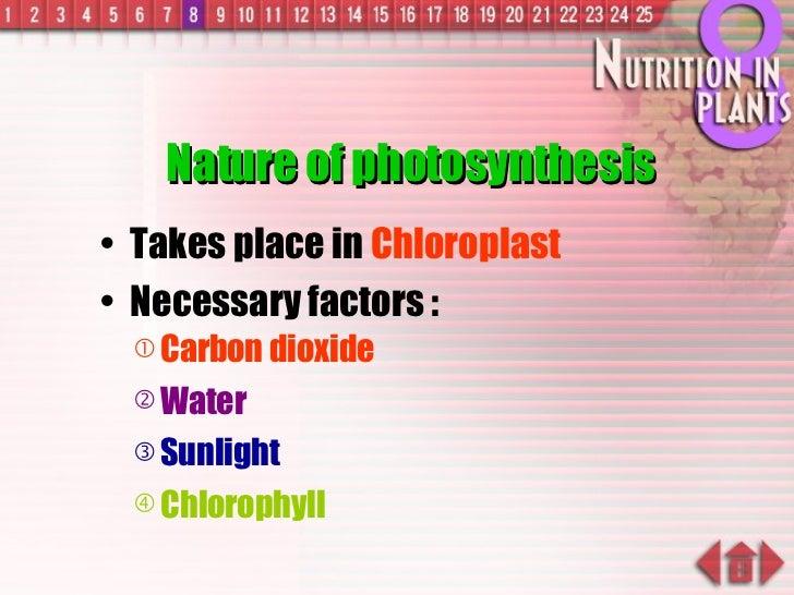 Nature of photosynthesis <ul><li>Takes place in  Chloroplast </li></ul><ul><li>Necessary factors : </li></ul><ul><ul><li>C...