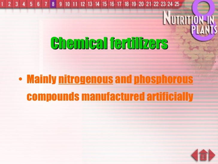Chemical fertilizers <ul><li>Mainly  nitrogenous  and  phosphorous  compounds manufactured artificially </li></ul>