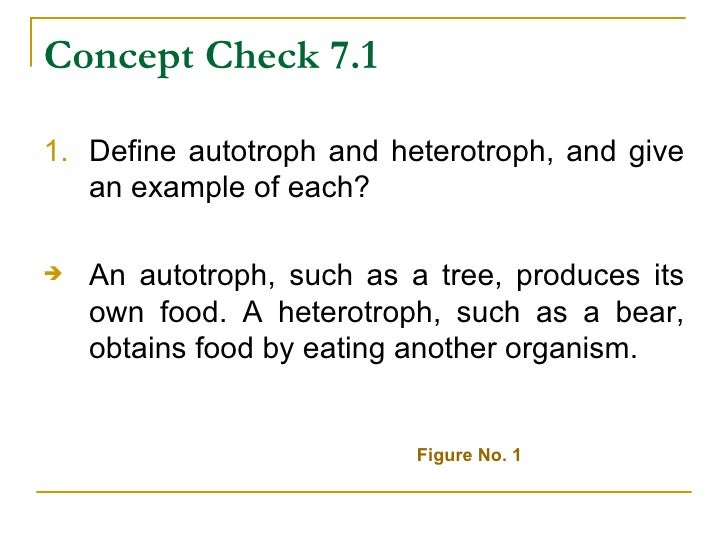 role of autotrophs and heterotrophs Distinguish between autotrophs and heterotrophs in terms of nutrient  identify  the materials required for photosynthesis and its role in the ecosystem • identify.