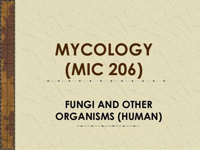 MYCOLOGY (MIC 206) FUNGI AND OTHERORGANISMS (HUMAN)
