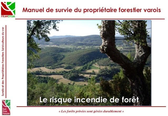 SyndicatdesPropriétairesForestiersSylviculteursduvar «Lesforêtsprivéessontgéréesdurablement» Manuel de survie du pr...