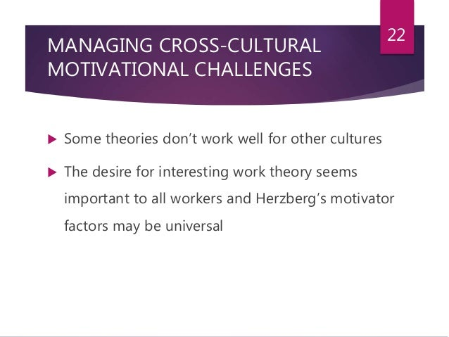 cross cultural issues in organizations
