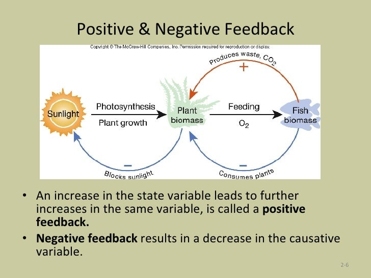 ee295 positives and negatives of virtue View notes - pro's and con's of virtue ethics from phl 347 at bradley university pro's and con's of virtue-based ethics (aristotle) pro's you consider the whole person, not just one act there is.