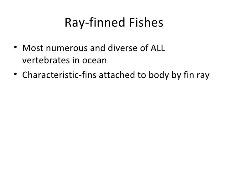 the characteristics of coelacanth a family of bony fishes Classroom activity for the nova program ancient creature of the deep: in fish the coelacanth has all these characteristics and is thus the bony fishes.