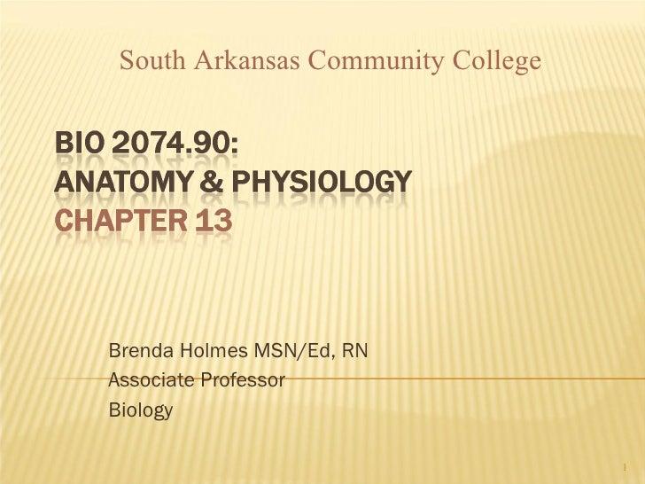 Brenda Holmes MSN/Ed, RN Associate Professor Biology South Arkansas Community College