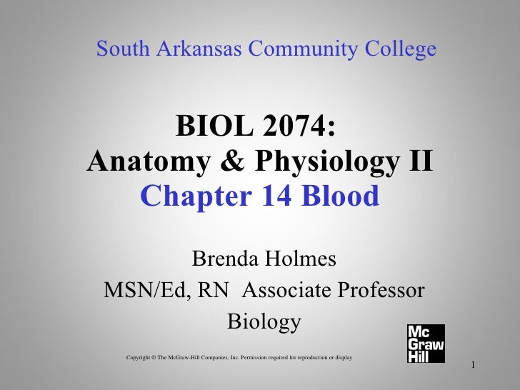 BIOL 2074:  Anatomy & Physiology II Chapter 14 Blood Brenda Holmes MSN/Ed, RN  Associate Professor Biology South Arkansas ...