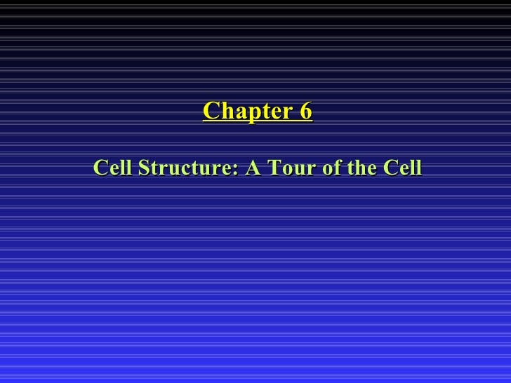 <ul><li>Chapter 6 </li></ul><ul><li>Cell Structure: A Tour of the Cell </li></ul>