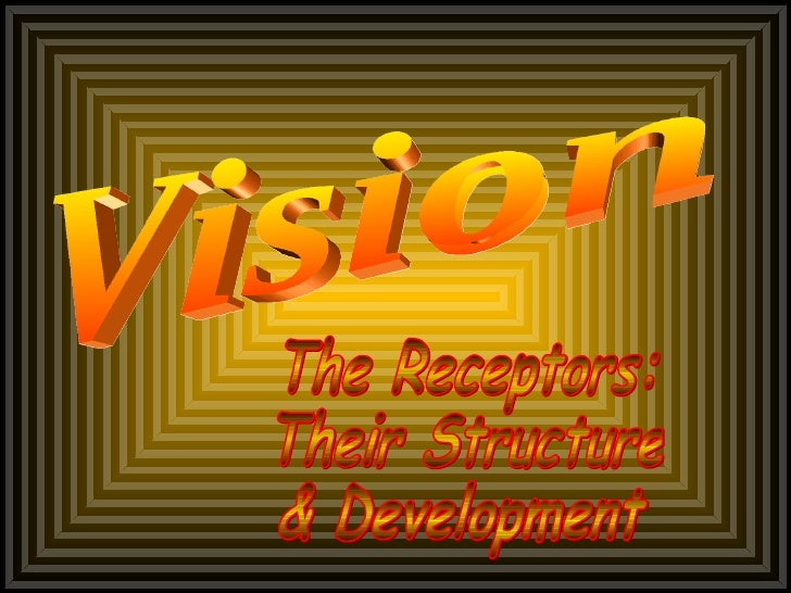 Vision The Receptors: Their Structure & Development