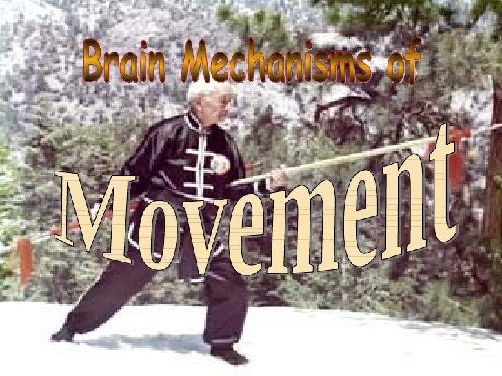 Brain Mechanisms of Movement