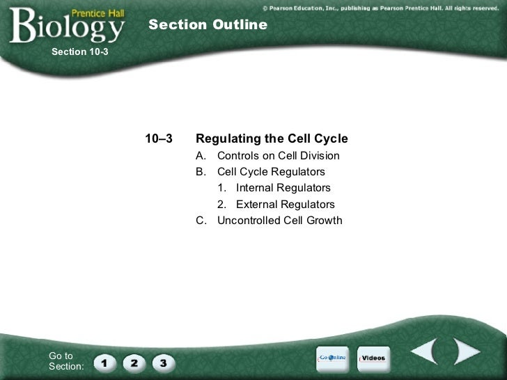 Printables Section 10-2 Cell Division Worksheet Answers section 10 2 cell division worksheet answers davezan chapter cycle