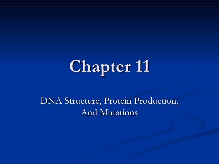 Chapter 11 DNA Structure, Protein Production, And Mutations