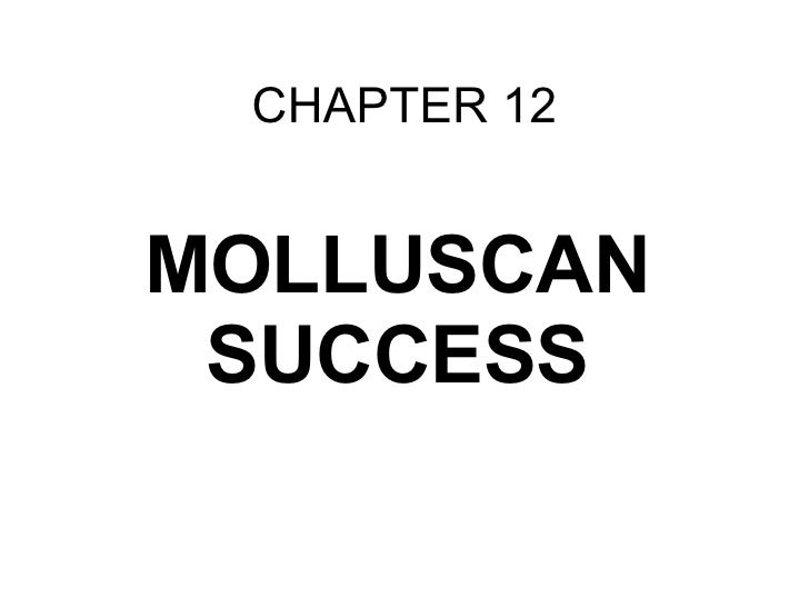 CHAPTER 12 MOLLUSCAN SUCCESS