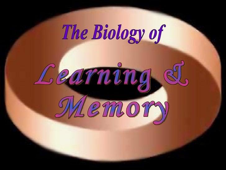 Memory and biology