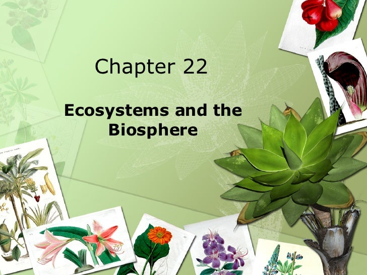 Chapter 22 Ecosystems and the Biosphere