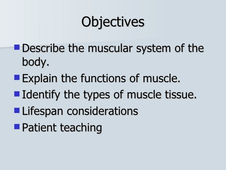 chapter 22 muscular system, Muscles