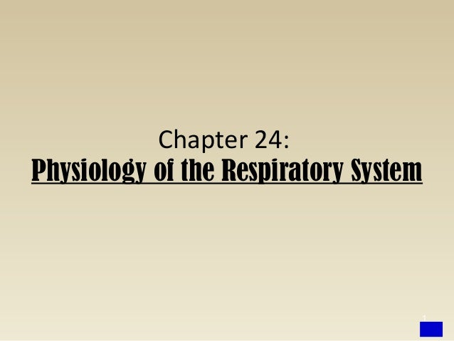 Chapter 24: Physiology of the Respiratory System  1
