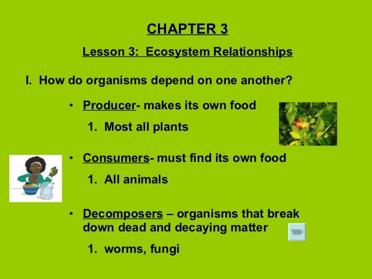 CHAPTER 3 Lesson 3:  Ecosystem Relationships I.  How do organisms depend on one another? <ul><li>Producer - makes its own ...