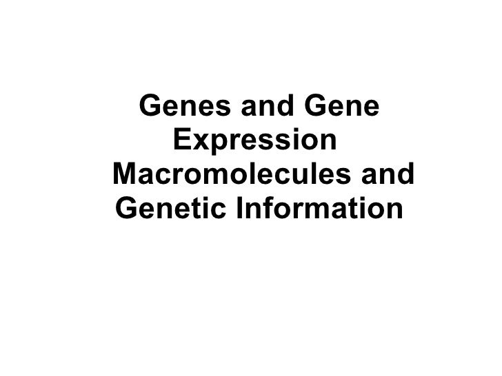 Genes and Gene Expression  Macromolecules and Genetic Information