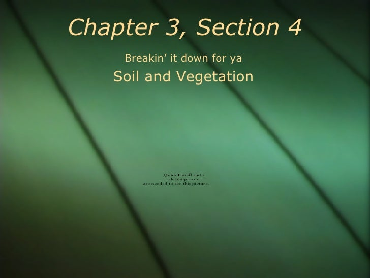 Chapter 3, Section 4 Breakin' it down for ya Soil and Vegetation